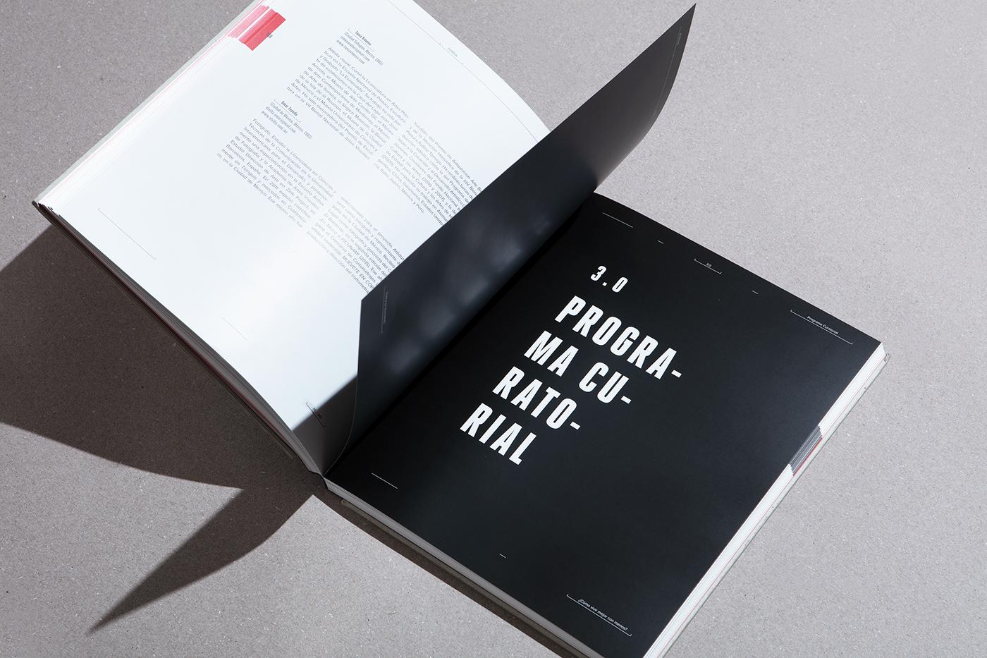 Bienal Femsa 摄影画册插图(3)