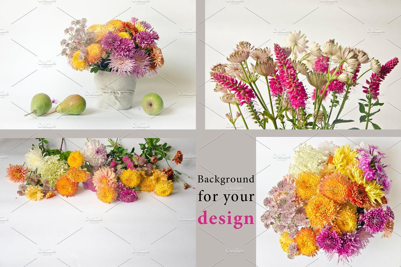 22款庭院花照片集合 Garden Flowers.22 Foto插图(4)
