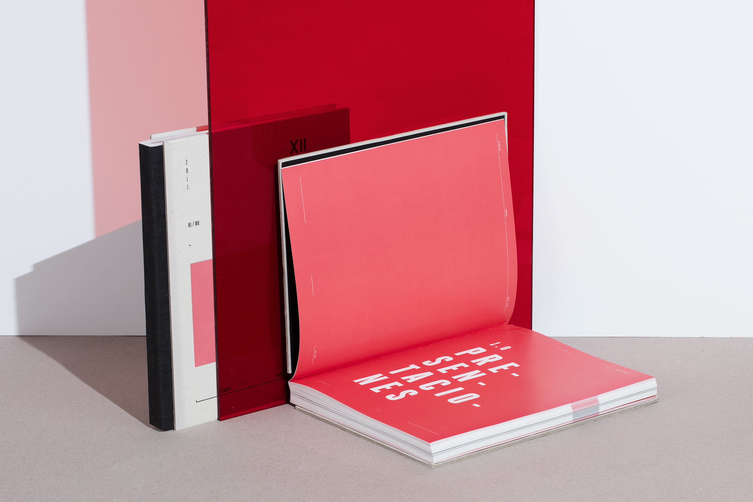 Bienal Femsa 摄影画册插图(9)