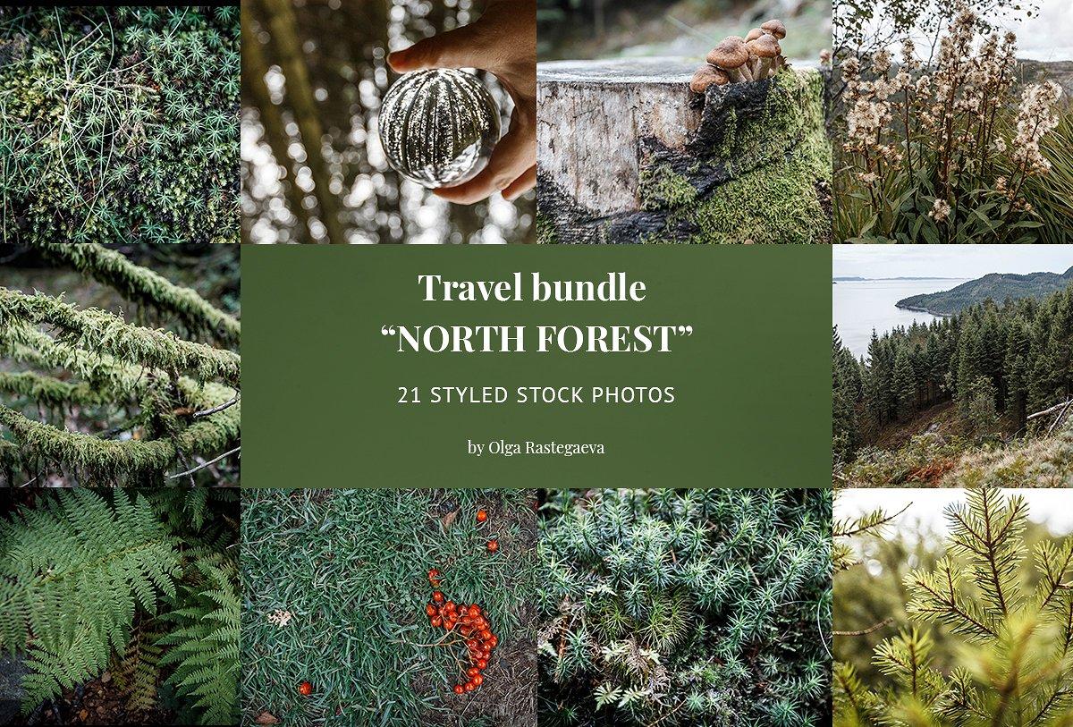 高清的挪威森林照片集 HD Norwegian Forest Photo Collection插图