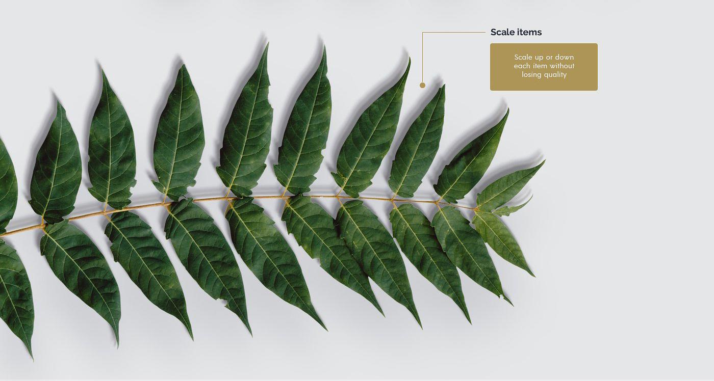 5.98G 餐饮品牌设计提案橄榄木木质餐具展示样机 Olive Wood Mock-Up Scene Generator插图(8)