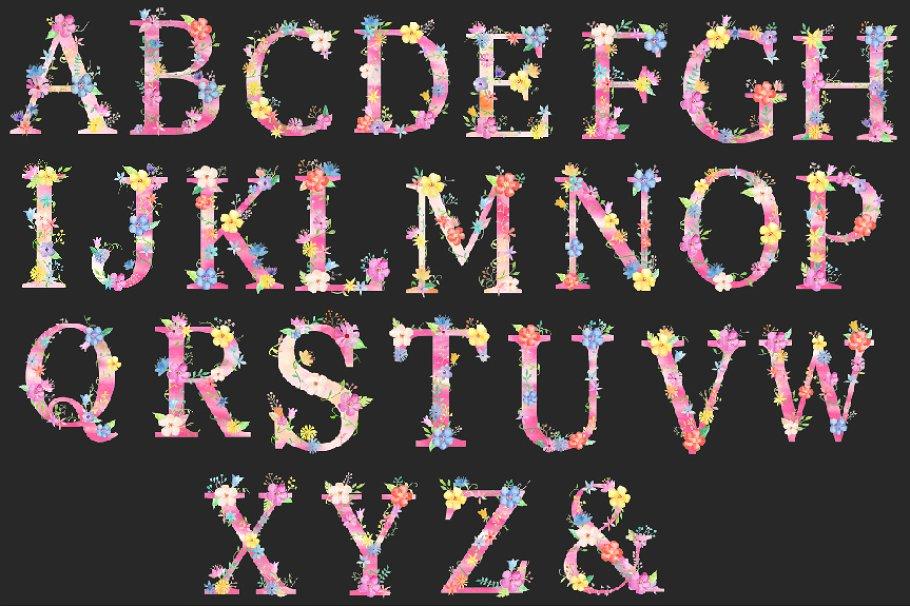 粉色少女心花卉装饰的大写字母A到Z图集 Pink Floral Alphabet A to Z插图(3)