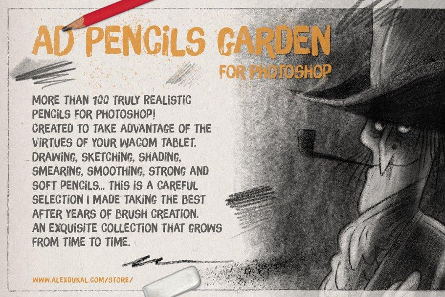 超强大的真实逼真铅笔素描纹理PS笔刷 The Pencils Garden插图(1)