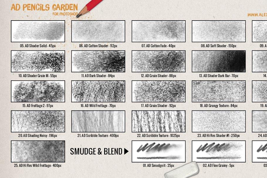 超强大的真实逼真铅笔素描纹理PS笔刷 The Pencils Garden插图(4)
