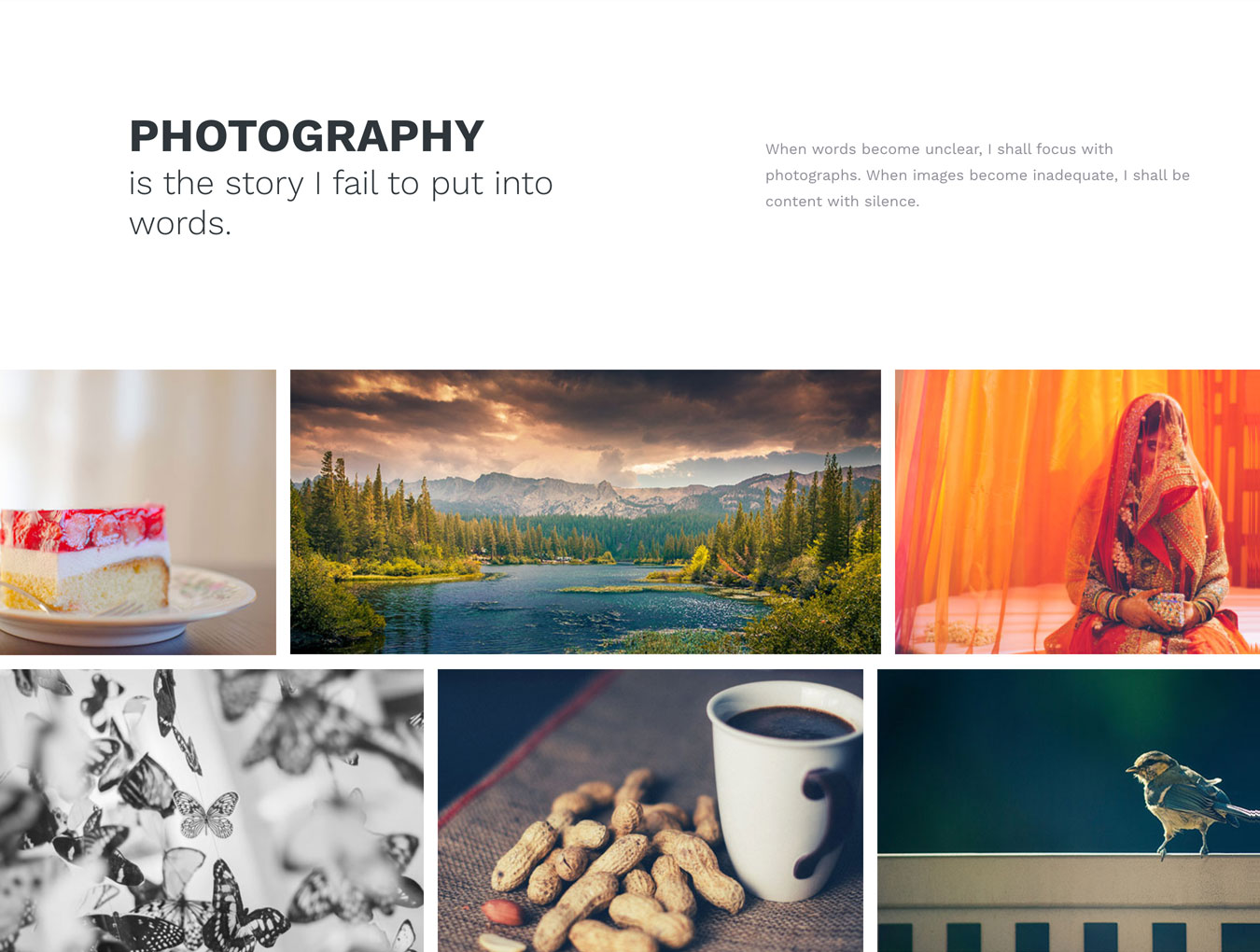 简约规整的WordPress主题摄影博客网站模板 PacificBlue Portfolio WP插图(3)