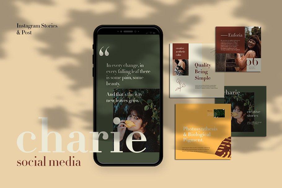 高端女性服装电商营销海报朋友圈广告INS风模板 Charies Instagram Templates插图