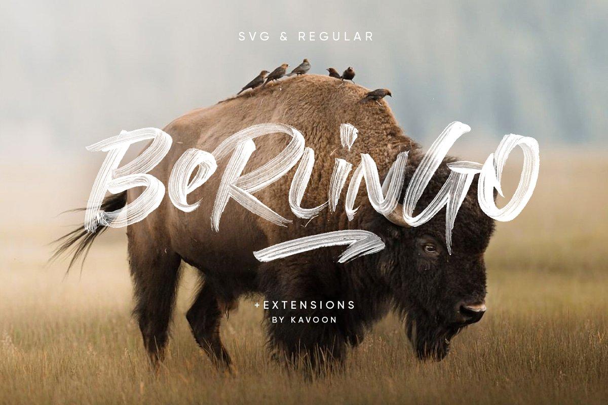 具有透明线条纹理毛笔笔刷书法英文字体 Berlingo SVG插图