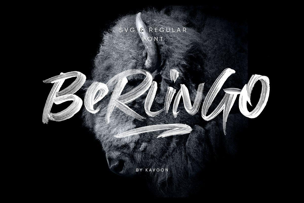 具有透明线条纹理毛笔笔刷书法英文字体 Berlingo SVG插图(1)