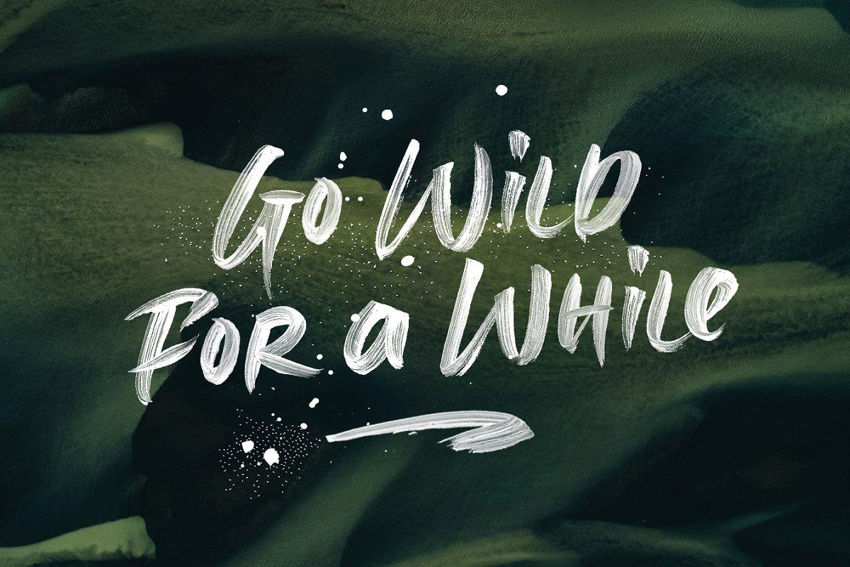 具有透明线条纹理毛笔笔刷书法英文字体 Berlingo SVG插图(4)