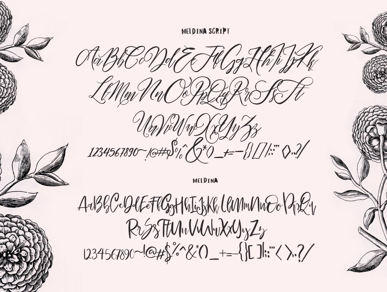 流畅手写签名字体下载 Maldina Feminine插图(7)