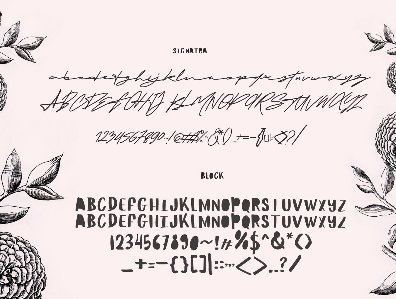 流畅手写签名字体下载 Maldina Feminine插图(6)