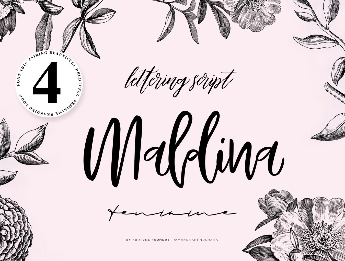 流畅手写签名字体下载 Maldina Feminine插图