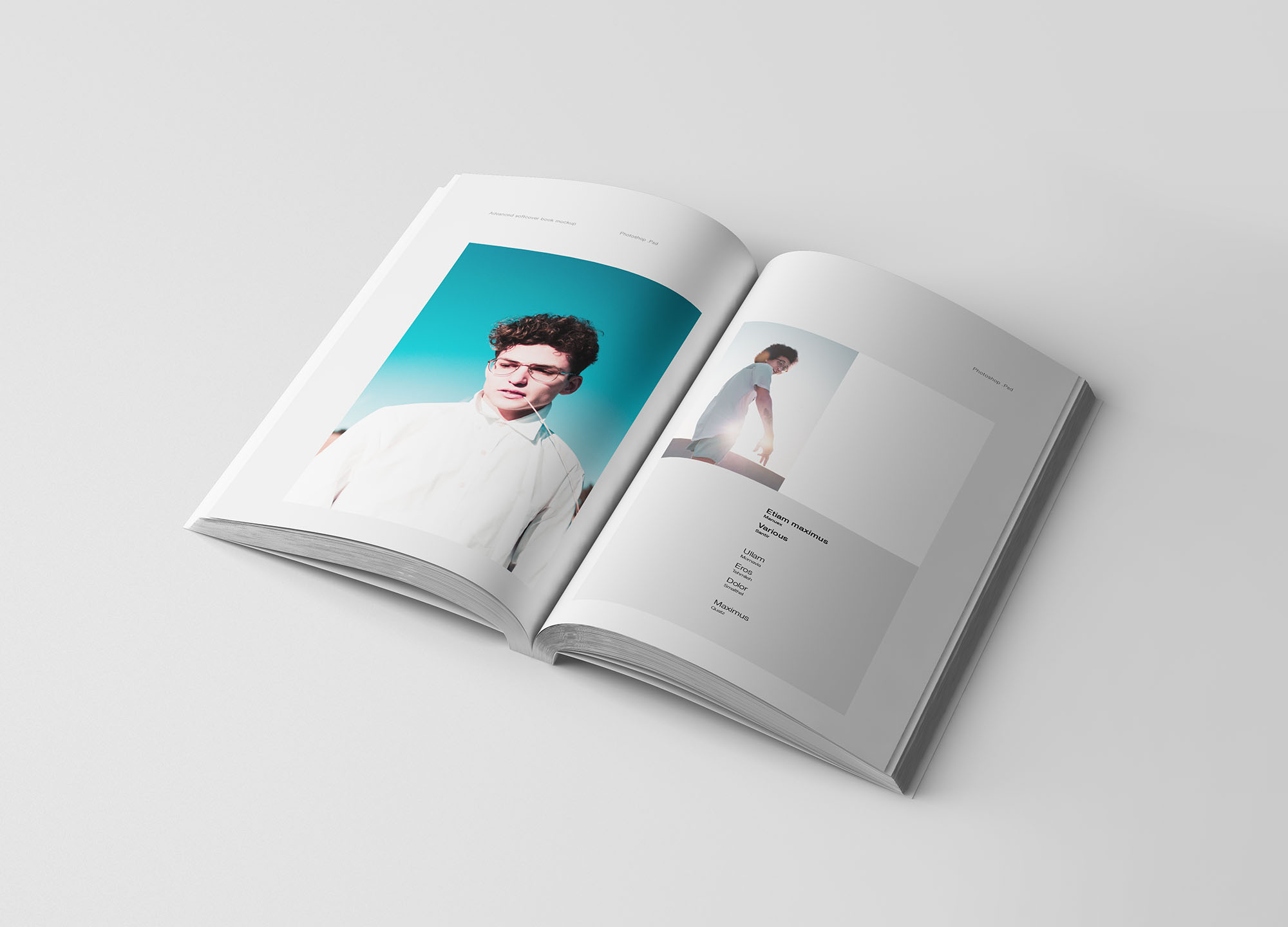 专业设计的A5平装书画册样机PSD模板 A5 Softcover Book Mockup插图(3)