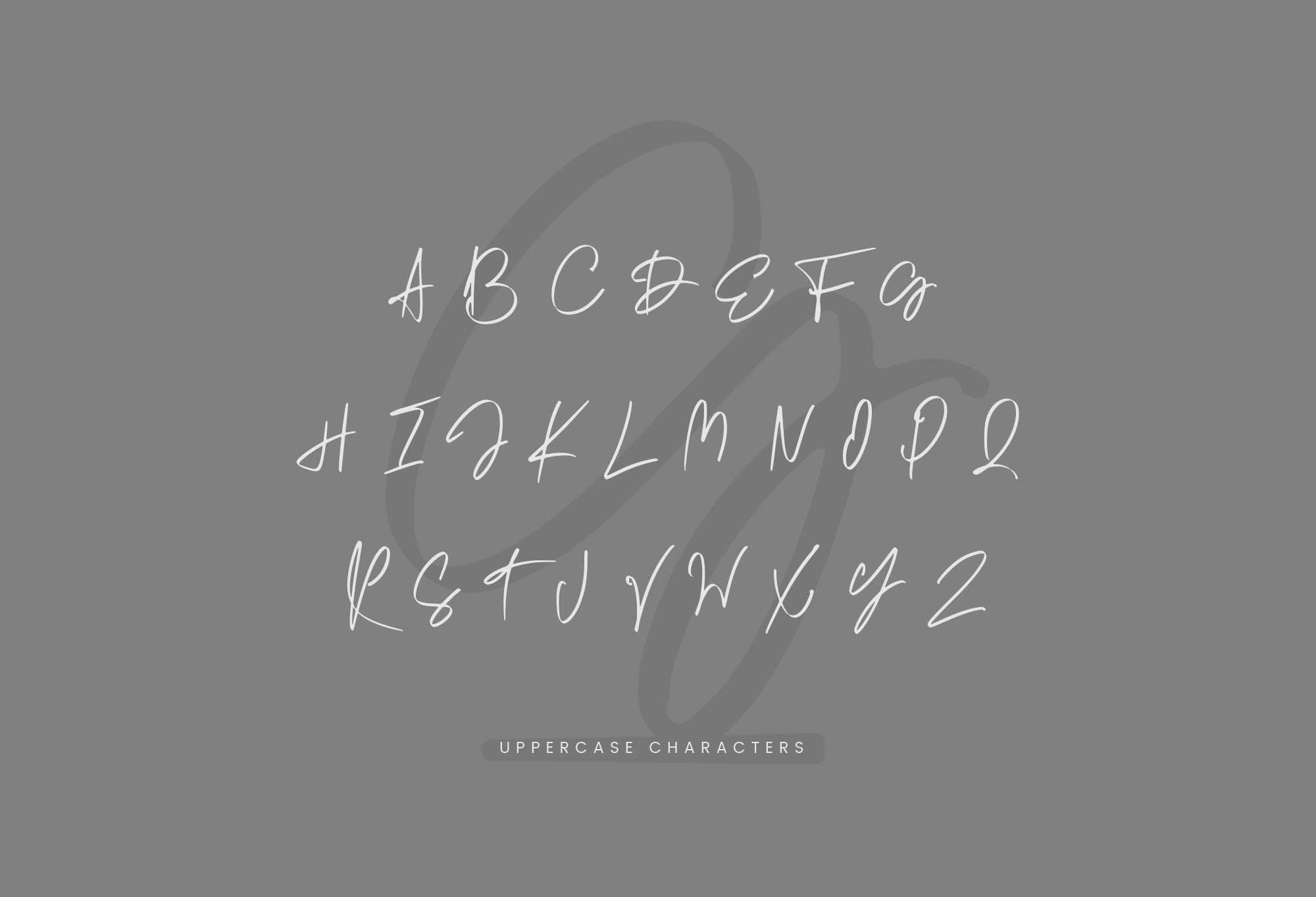 时尚手写/书法艺术签名英文字体 Germany Calligraphy Font插图(3)