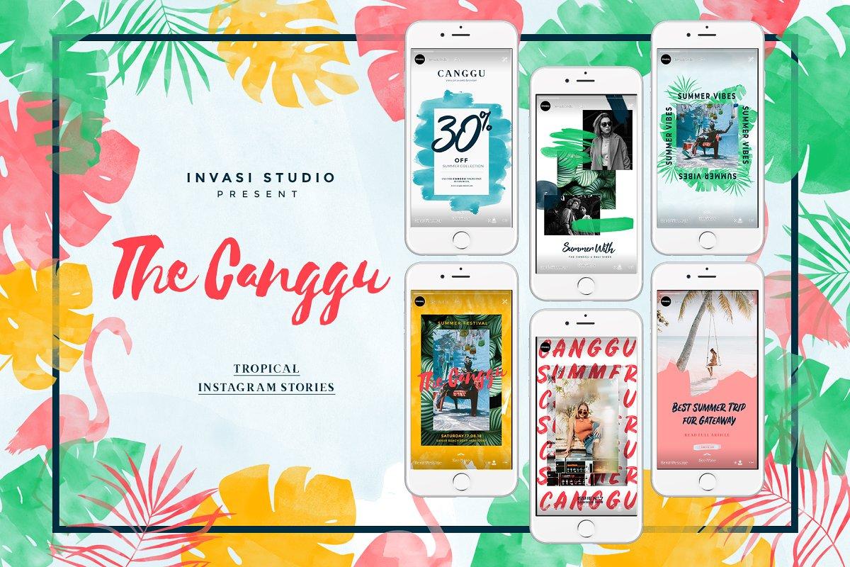 热带水彩设计品牌故事Instagram推广社交媒体模板 CANGGU-Tropical Instagram Animated插图