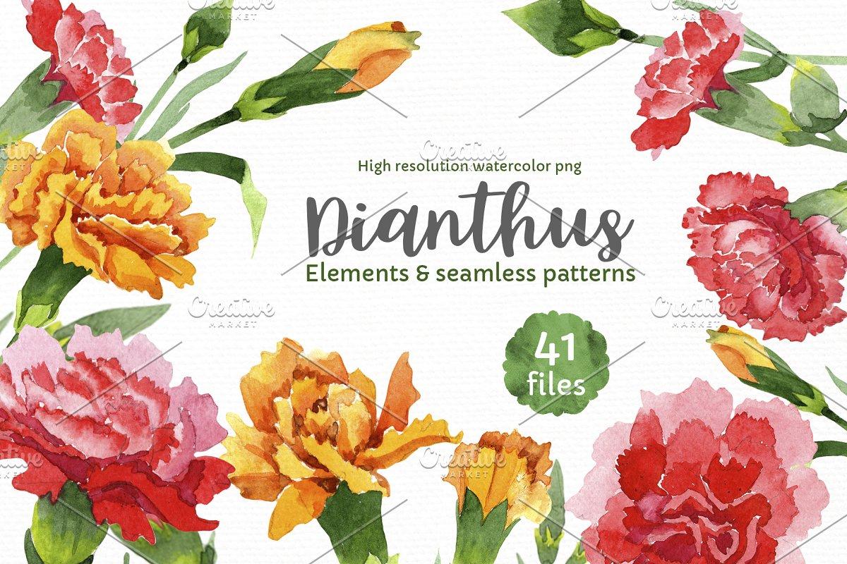 红色康乃馨花卉水彩剪贴画素材包 Carnation Red Flowers Illustration插图