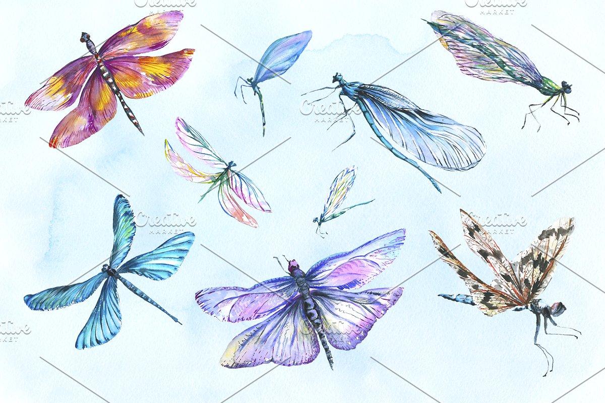 多彩手绘蜻蜓水彩剪贴画素材包 Dragonfly Illustration Watercolor插图(1)