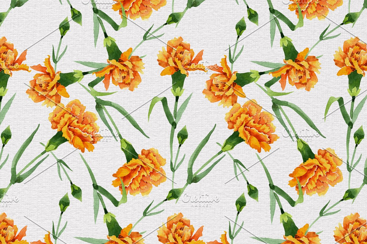 红色康乃馨花卉水彩剪贴画素材包 Carnation Red Flowers Illustration插图(5)