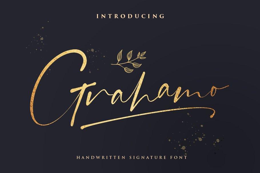 现代精美手写连字签名英文字体 Grahamo – Luxury Script插图