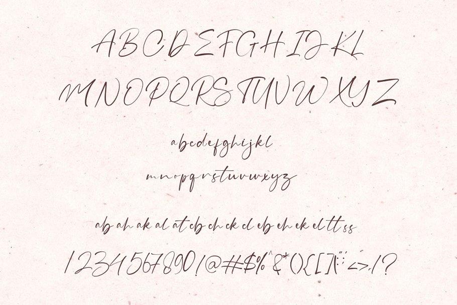 现代精美手写连字签名英文字体 Grahamo – Luxury Script插图(13)
