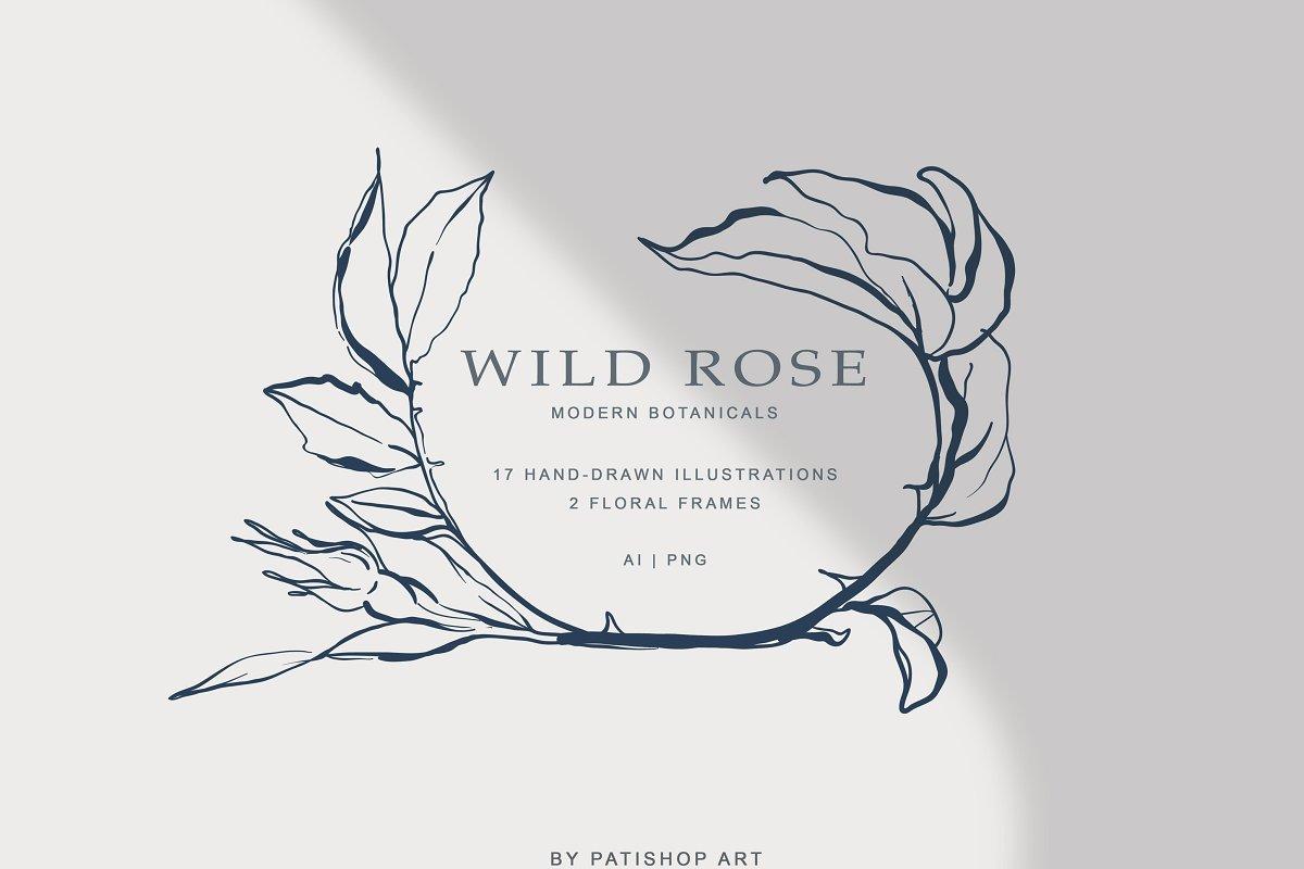 现代手绘玫瑰花简笔画矢量线稿图合集 Modern Hand Drawn Wild Rose Illustr插图