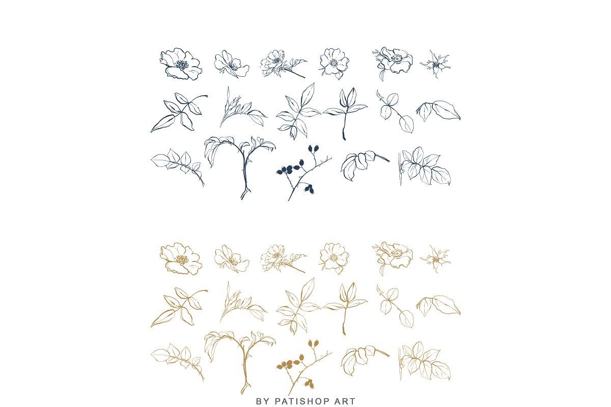 现代手绘玫瑰花简笔画矢量线稿图合集 Modern Hand Drawn Wild Rose Illustr插图(7)