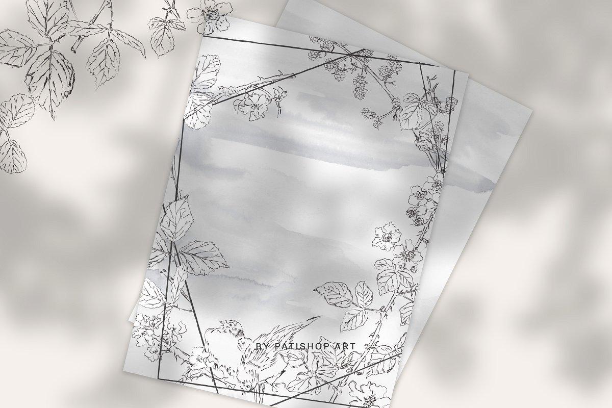 手绘细线艺术黑莓花卉剪贴画集 Hand Drawn Fine Line Art Clipart插图(8)