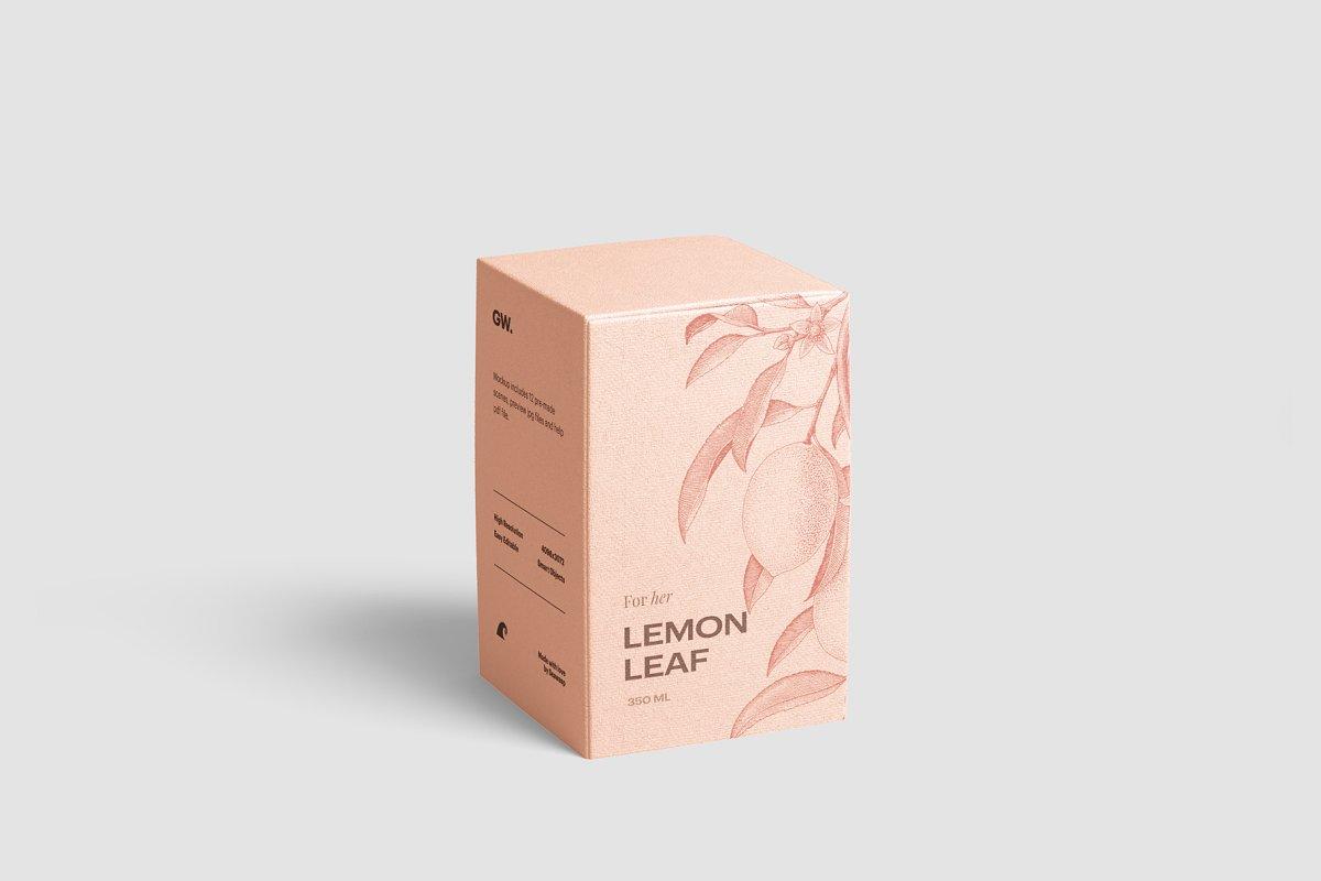 高质量方形化妆品香水包装盒设计预览图样机模板 Box Mockup Vol.3插图(13)