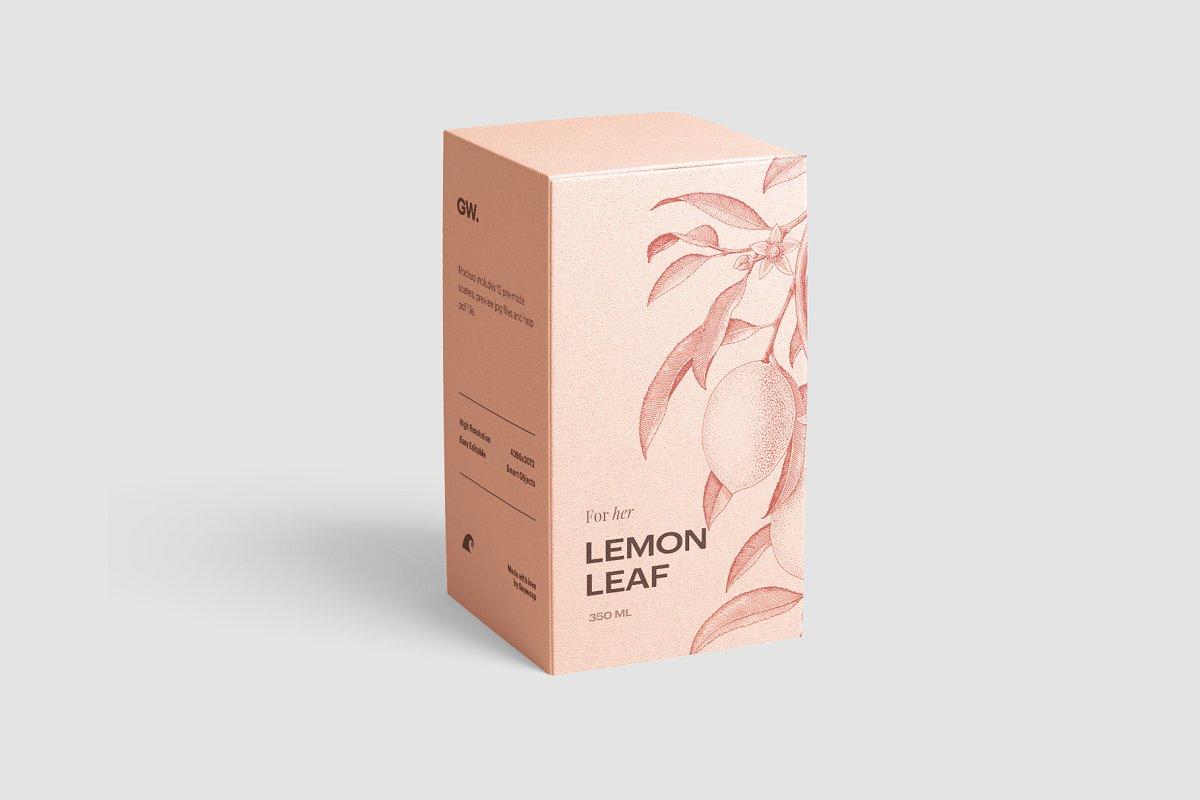 高质量方形化妆品香水包装盒设计预览图样机模板 Box Mockup Vol.3插图(3)