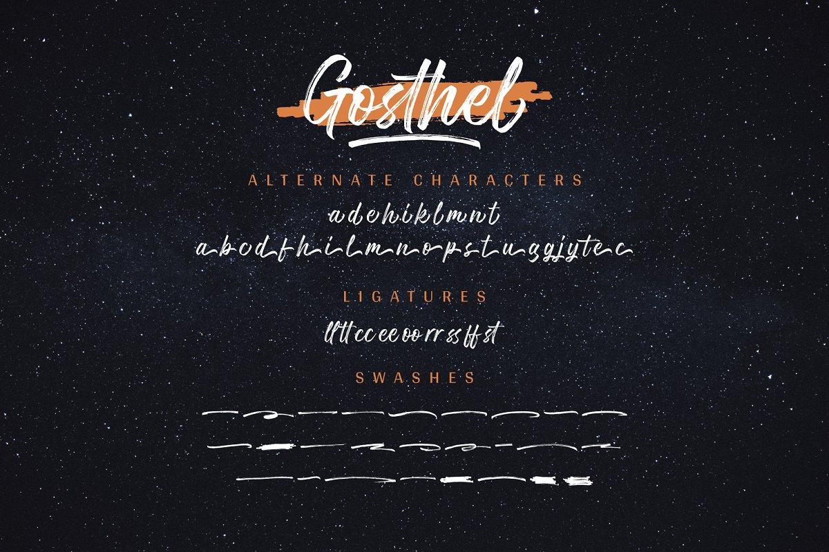手写毛笔笔刷书法英文字体 Gosthel | Dry Brush Font插图(12)