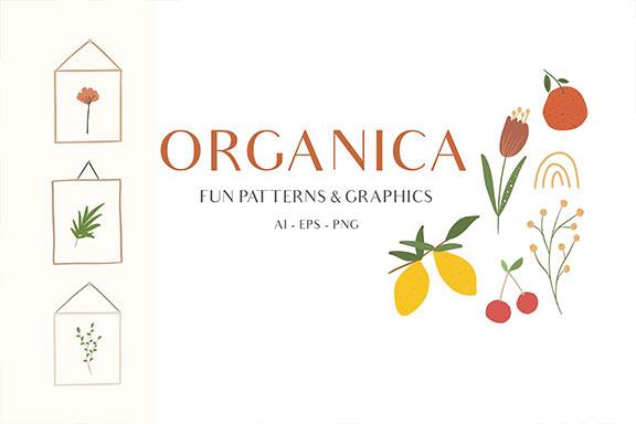 抽象手绘水果花卉树叶矢量插图套装 Abstract Shapes & Fun Fruits