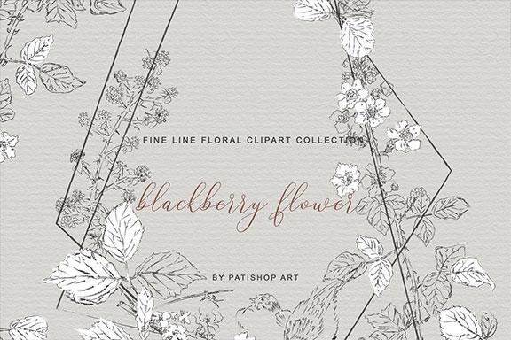 手绘细线艺术黑莓花卉剪贴画集 Hand Drawn Fine Line Art Clipart