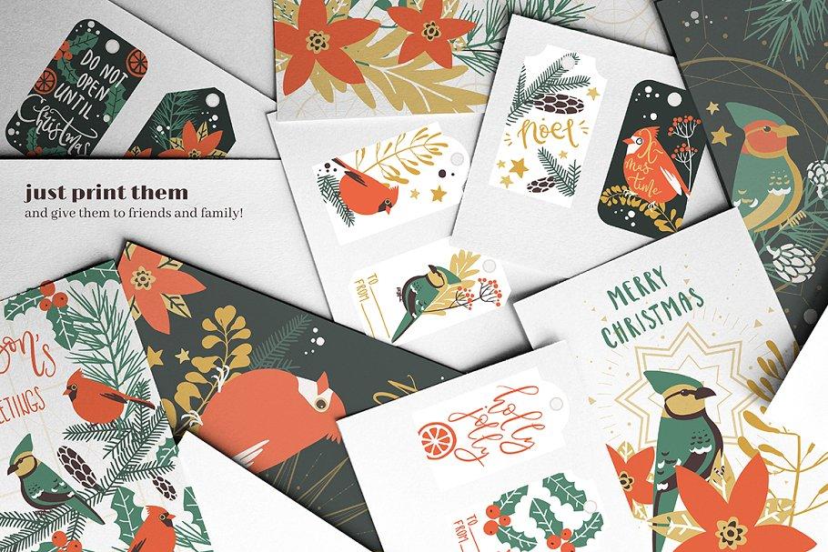 圣诞节主题手绘水彩植物装饰元素剪贴画合集 Classic Christmas. Clipart set插图(6)