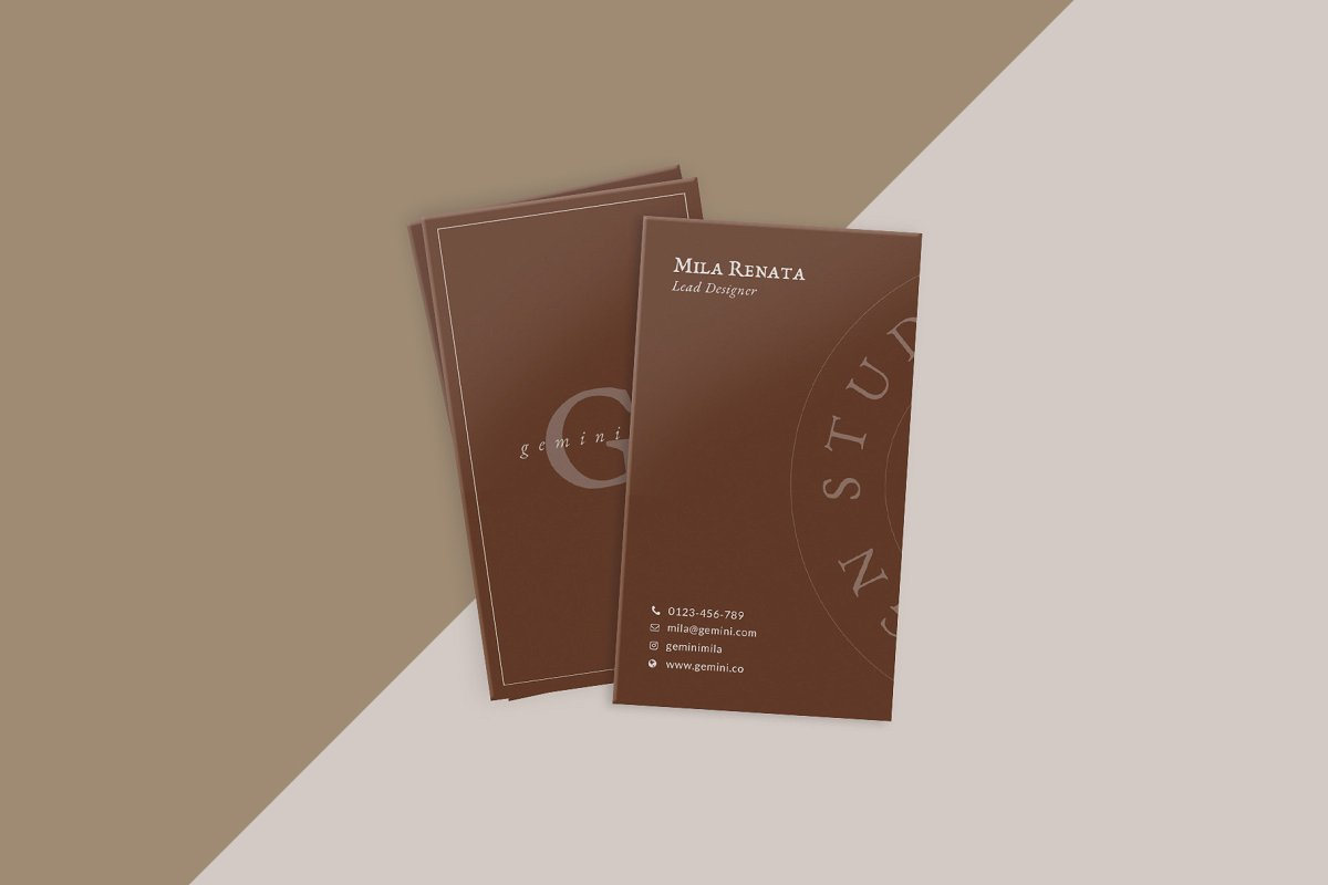 优美商务名片设计PSD模板素材包 Gemini Business Card Templates插图(4)
