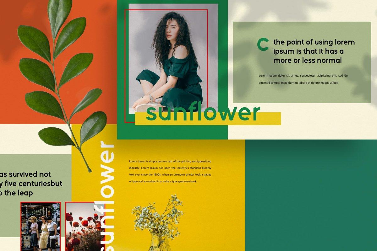 时尚潮流服装摄影作品集PPT演示文稿设计模板 Sunflower – Powerpoint插图(7)