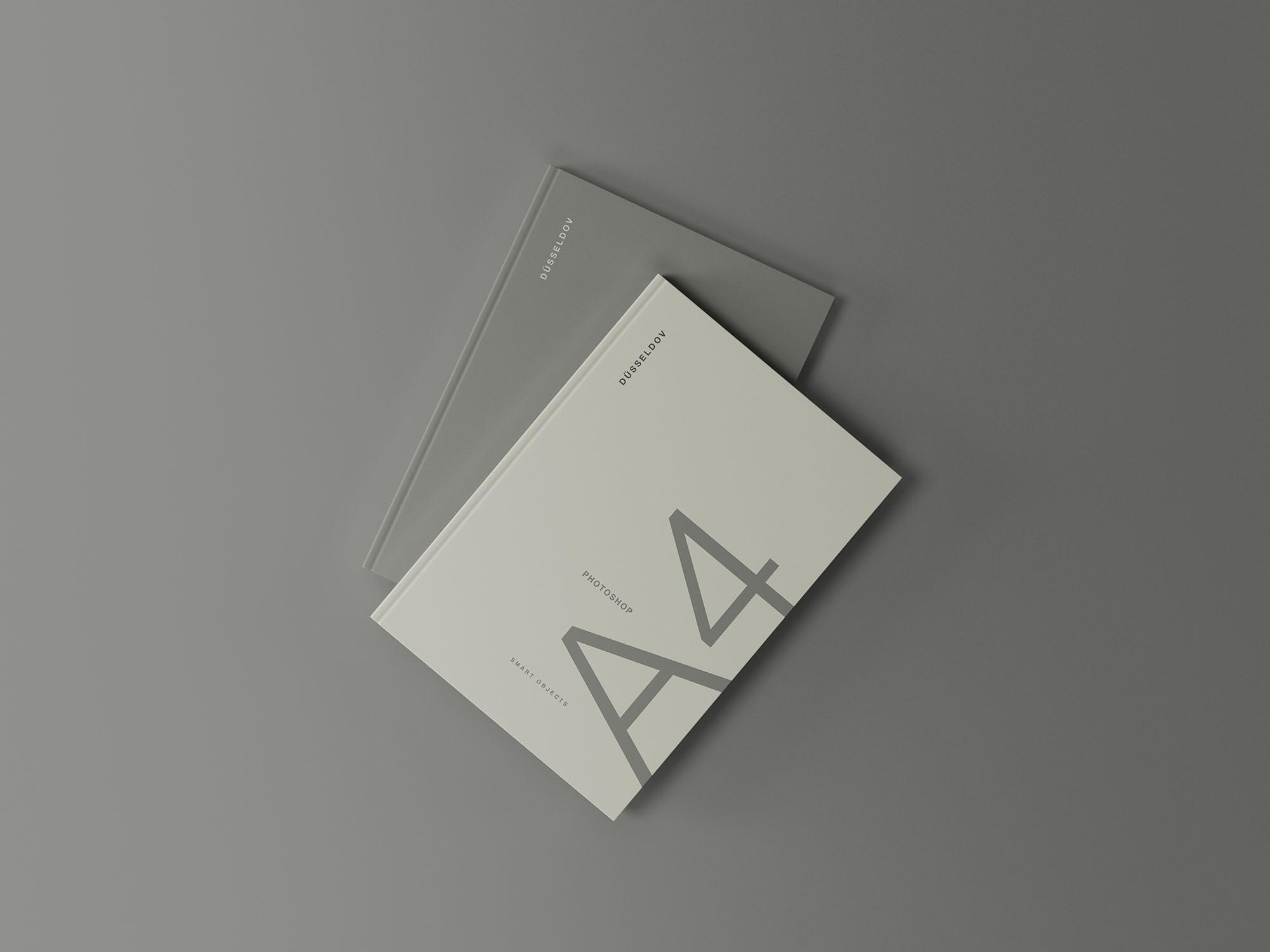 2本精装书画册封面设计效果图样机模板 2 Hardcover Books Mockup插图