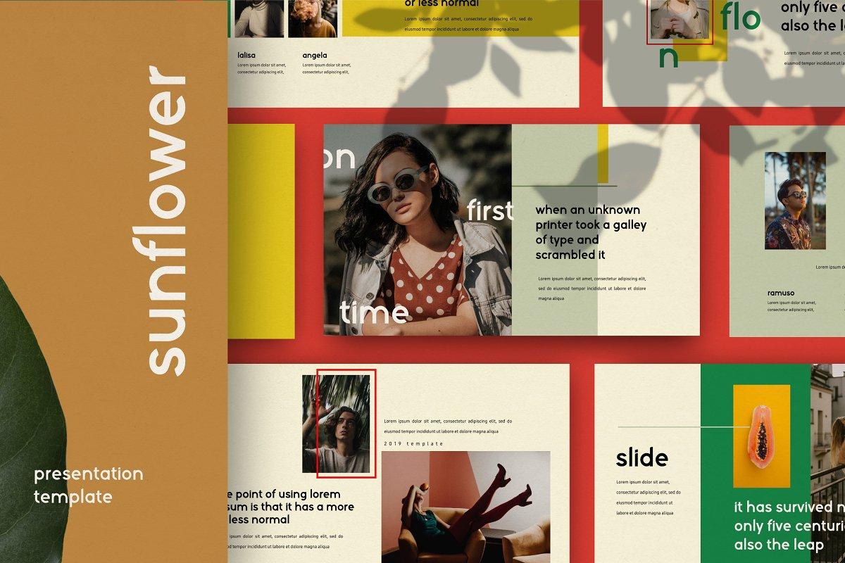 时尚潮流服装摄影作品集PPT演示文稿设计模板 Sunflower – Powerpoint插图