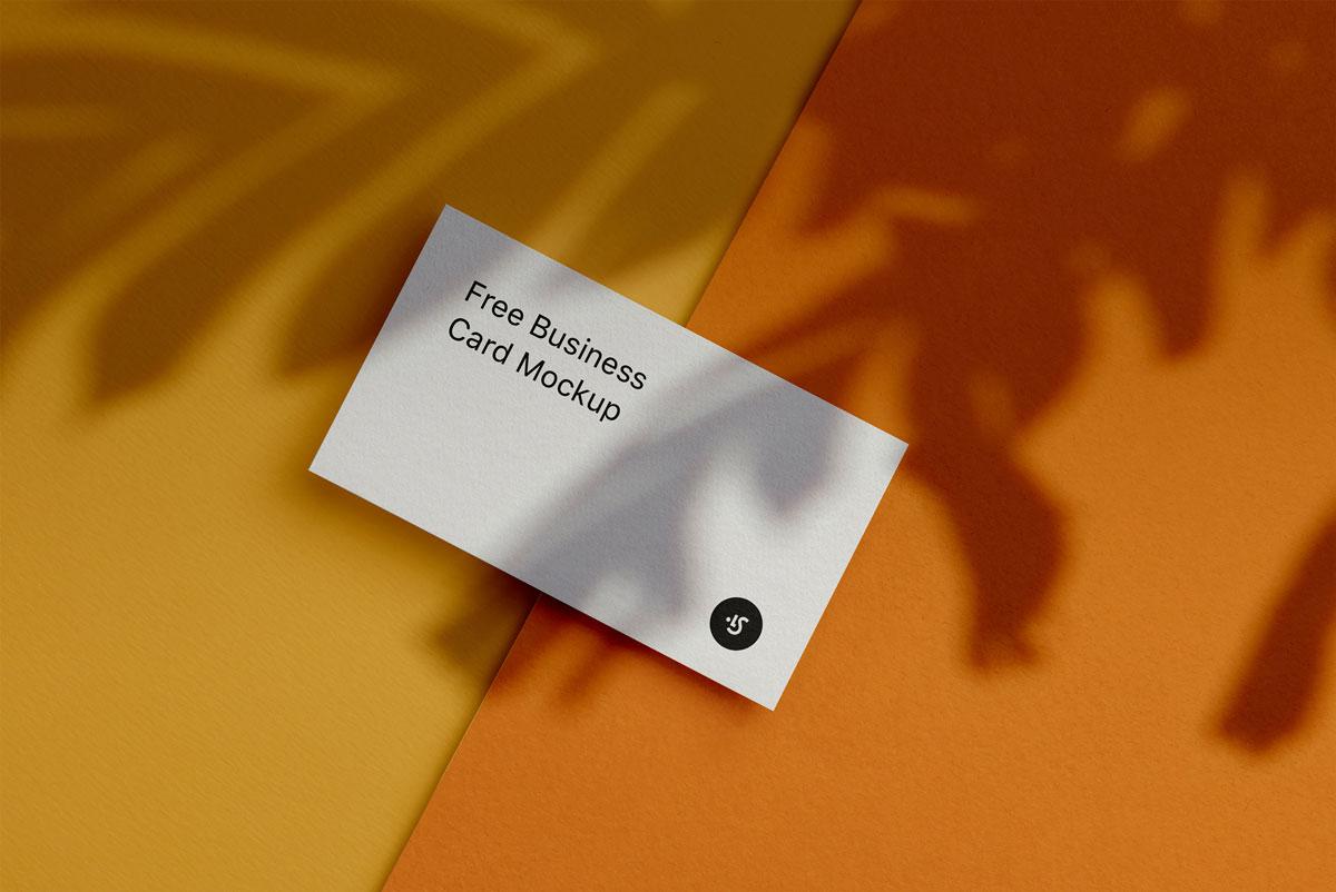 企业品牌设计商务名片展示样机模板 Business Card Mockup插图(3)