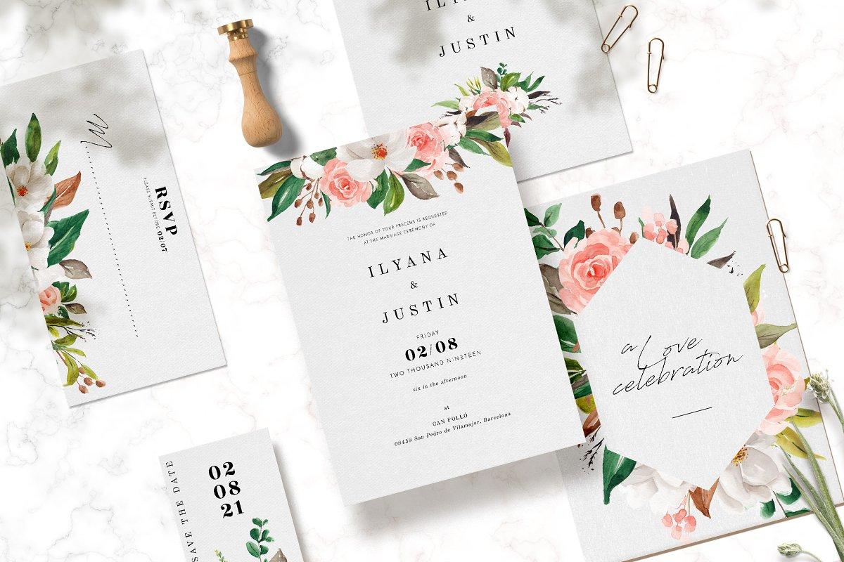 淡雅花卉&树叶水彩插画设计素材包 Floral & Foliage Illustration Pack插图(1)
