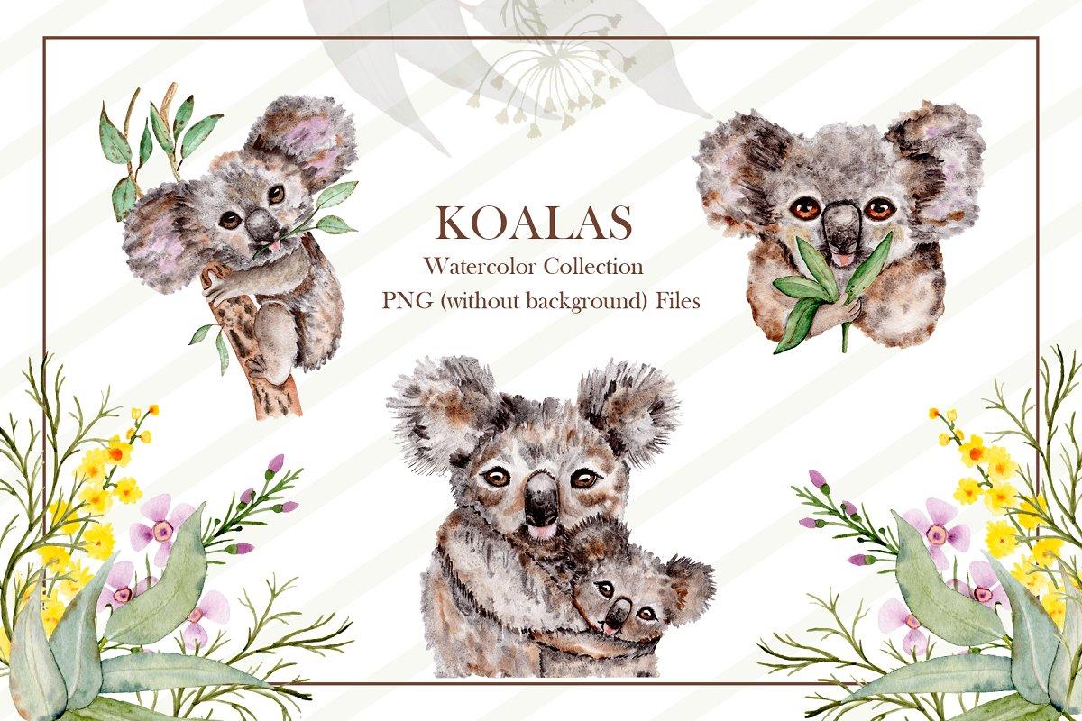 可爱考拉手绘水彩剪贴画集设计素材 Watercolor Koala Collection插图(1)