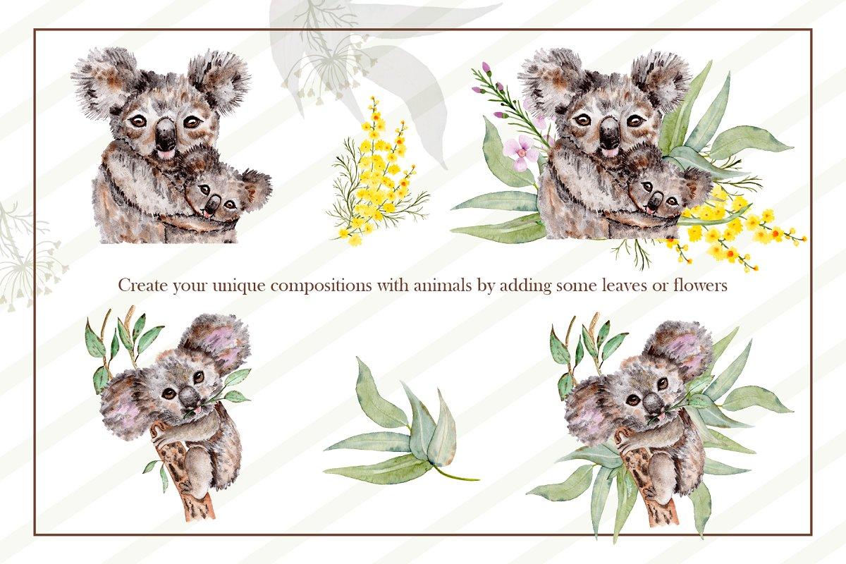 可爱考拉手绘水彩剪贴画集设计素材 Watercolor Koala Collection插图(7)
