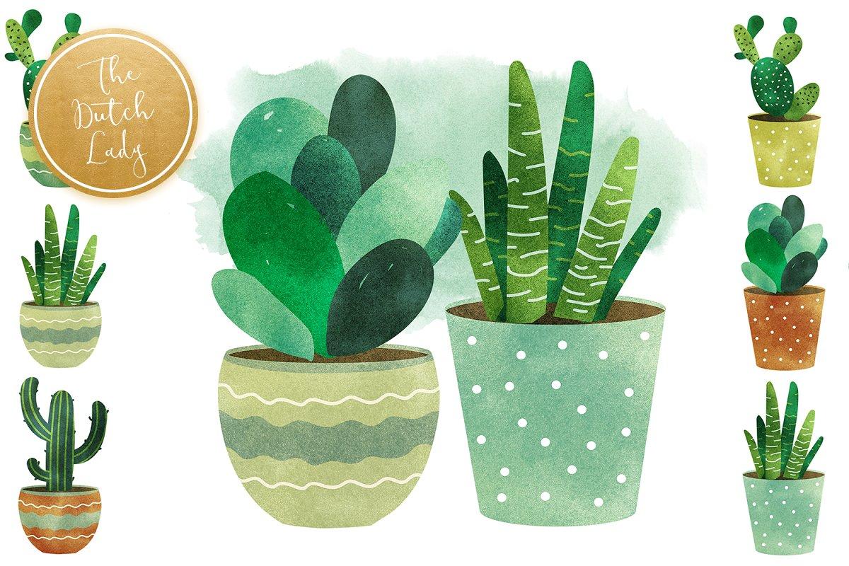 高品质仙人掌&多肉水彩剪贴画套装 Cacti & Succulent Clipart Set插图(3)