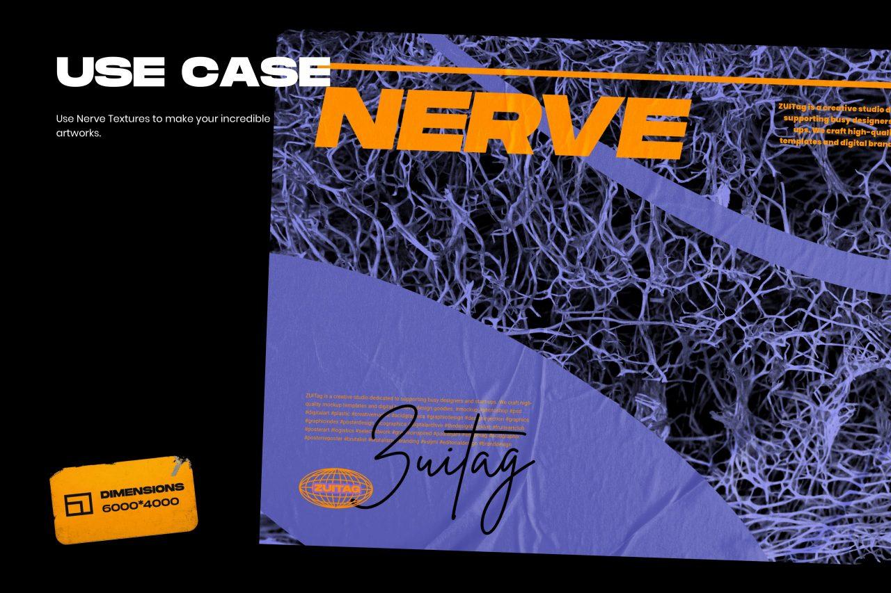 25款高清有机海绵纤维海报设计背景纹理JPG图片素材 Nerve Textures插图(1)
