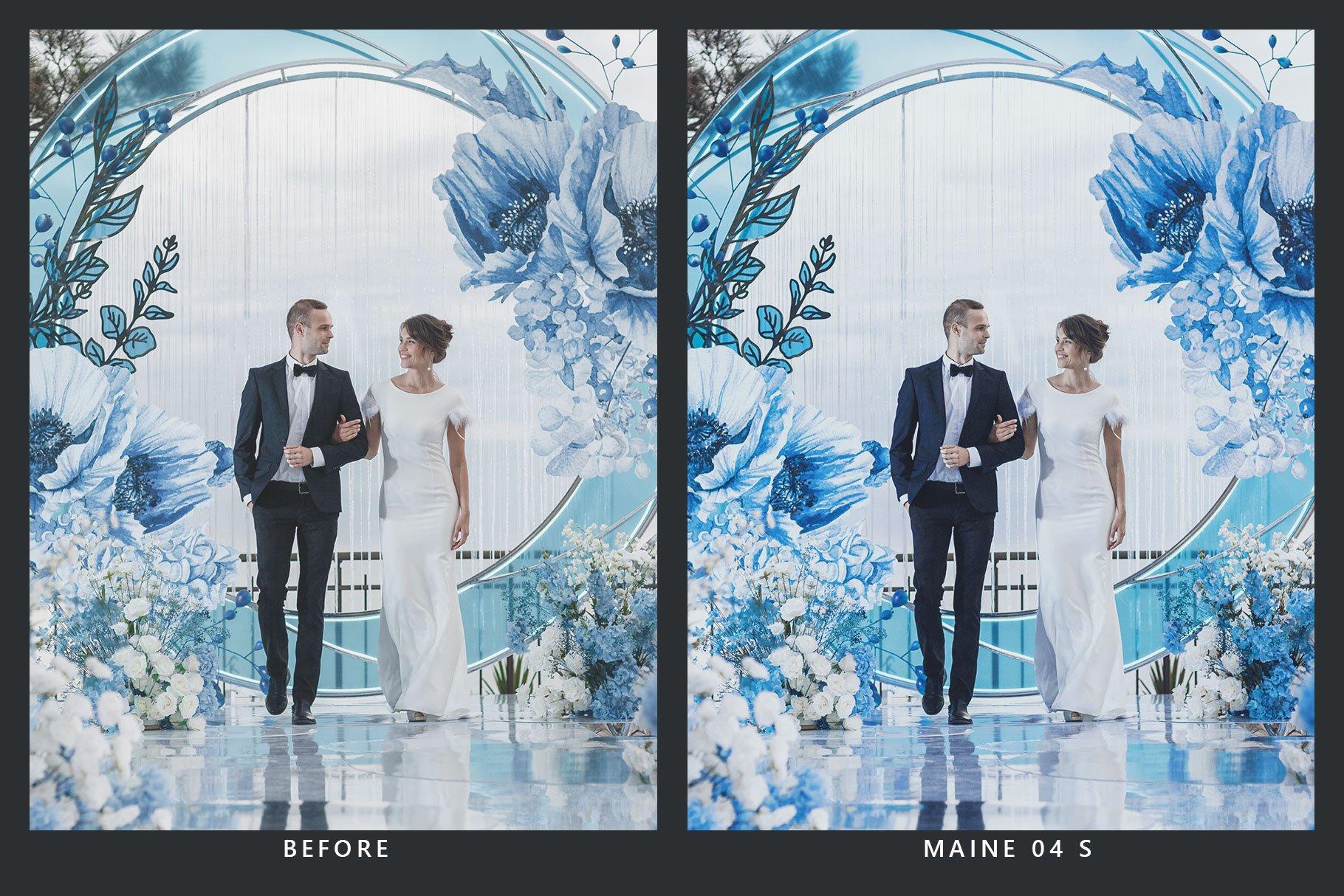 20款蓝色调海滩摄影照片调色滤镜LR预设 20 Blueberry Lightroom Presets & LUT插图(2)