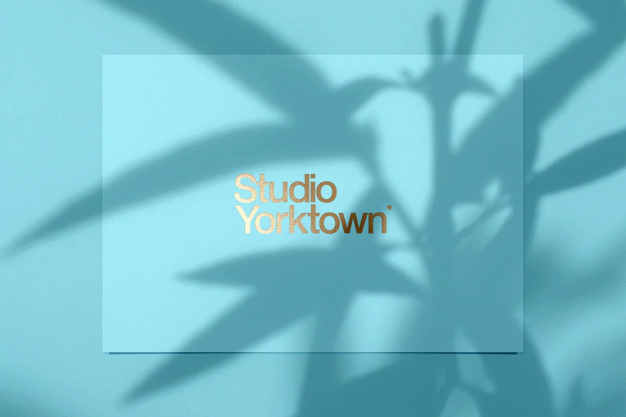 20款高清文艺优雅自然植物阴影投影PNG叠层图片 Kage – Botanical Shadow Overlays插图(5)