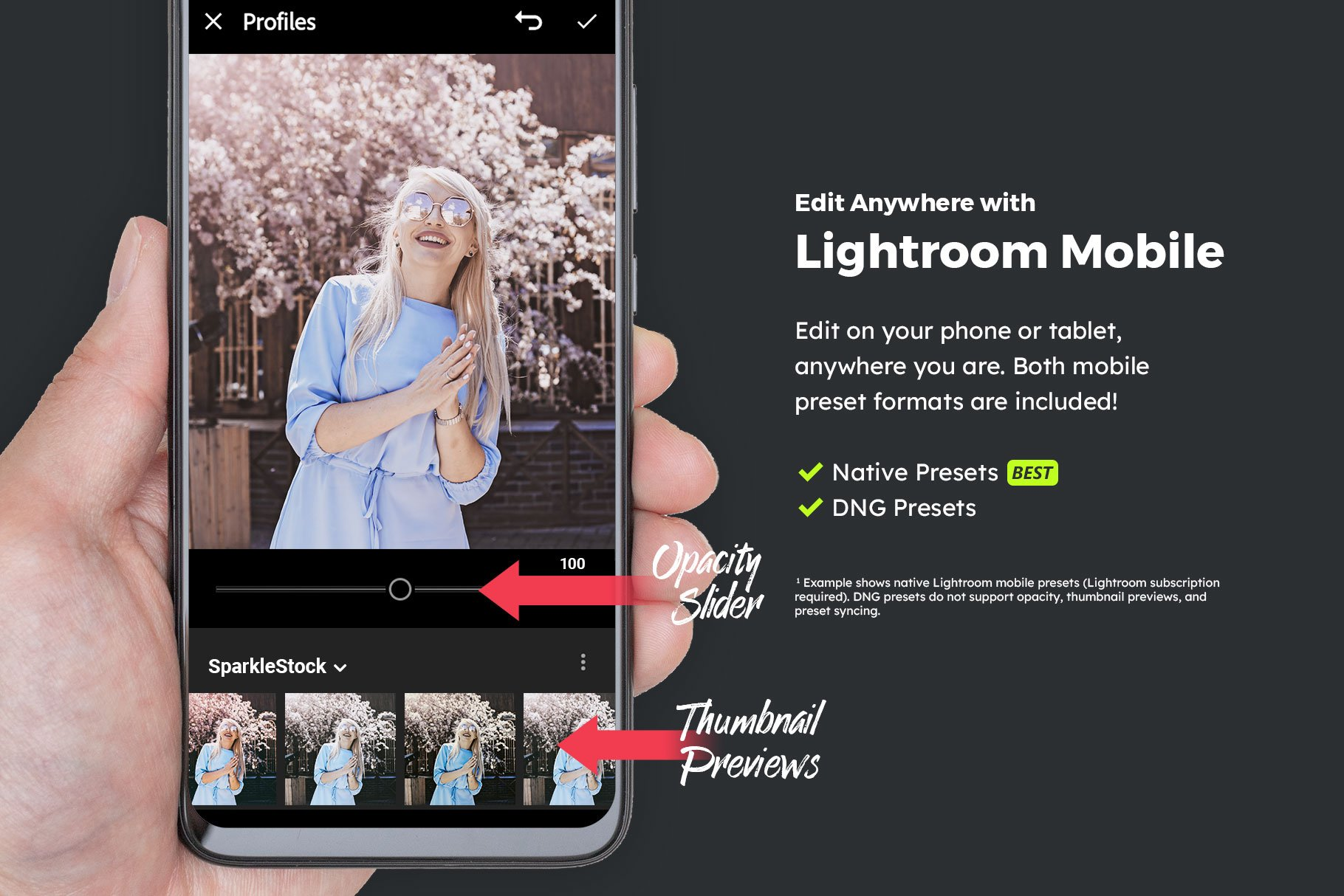 20款蓝色调海滩摄影照片调色滤镜LR预设 20 Blueberry Lightroom Presets & LUT插图(5)