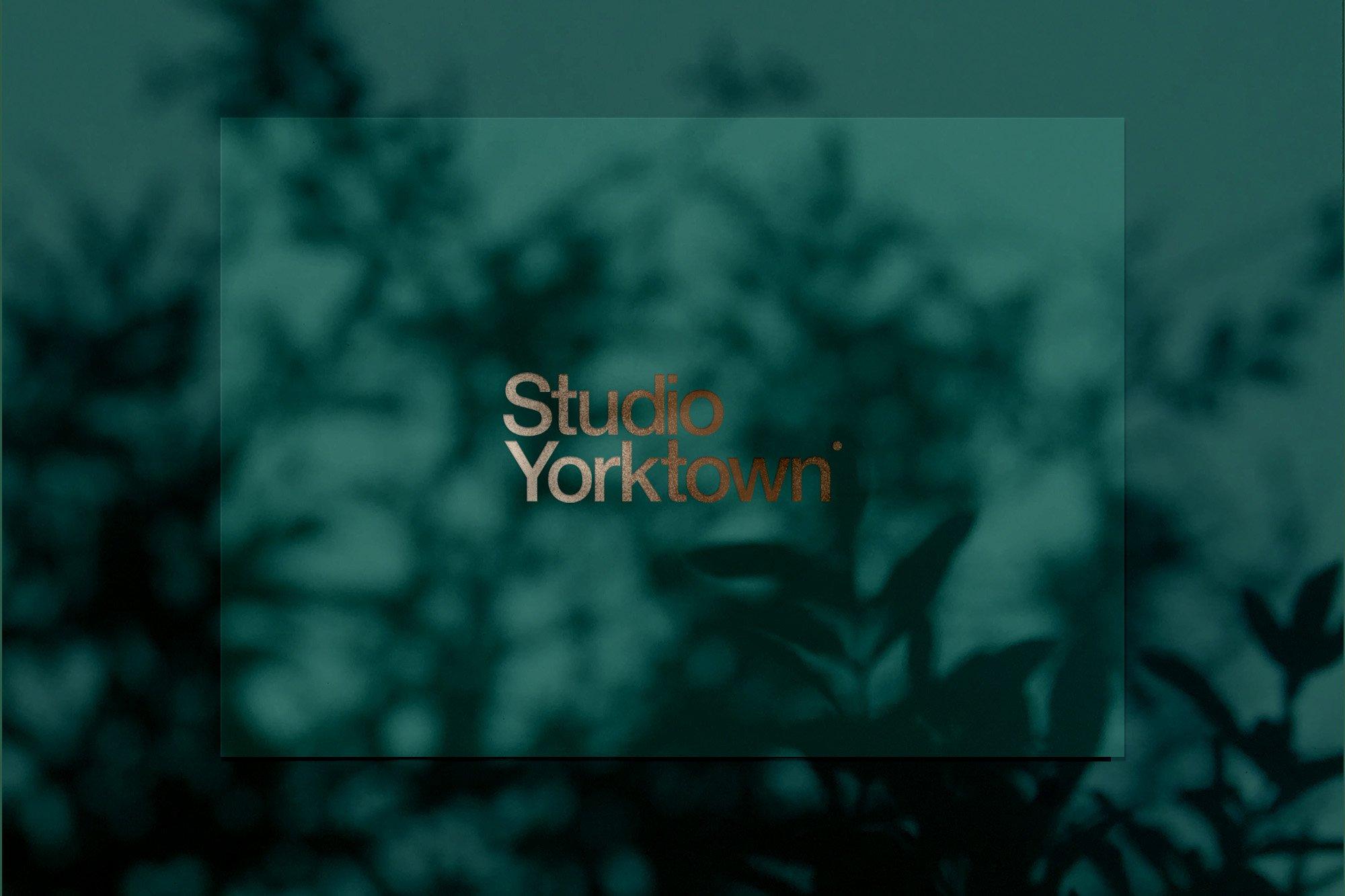 20款高清文艺优雅自然植物阴影投影PNG叠层图片 Kage – Botanical Shadow Overlays插图(7)