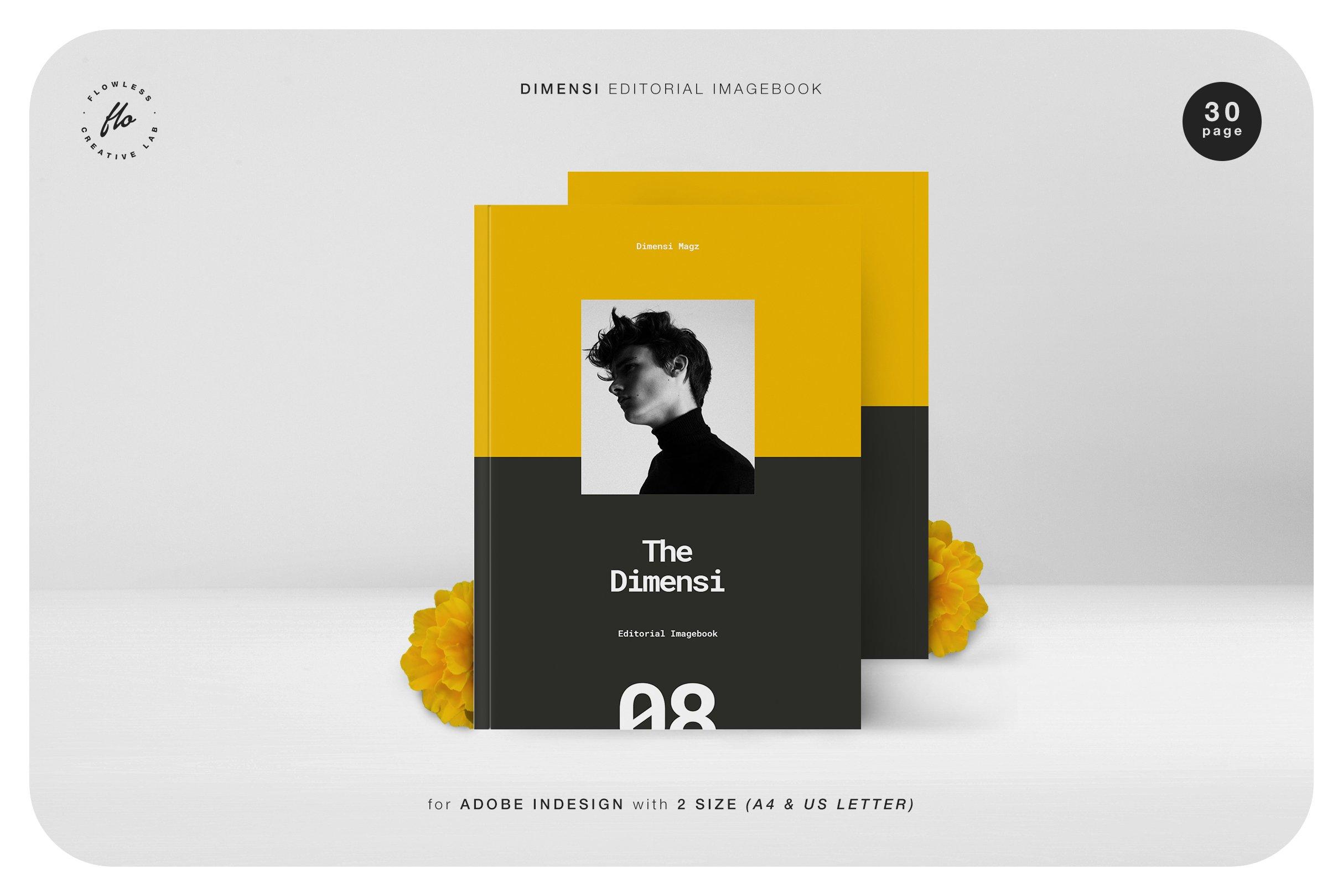 摄影作品集设计INDD画册模板 DIMENSI Editorial Imagebook插图