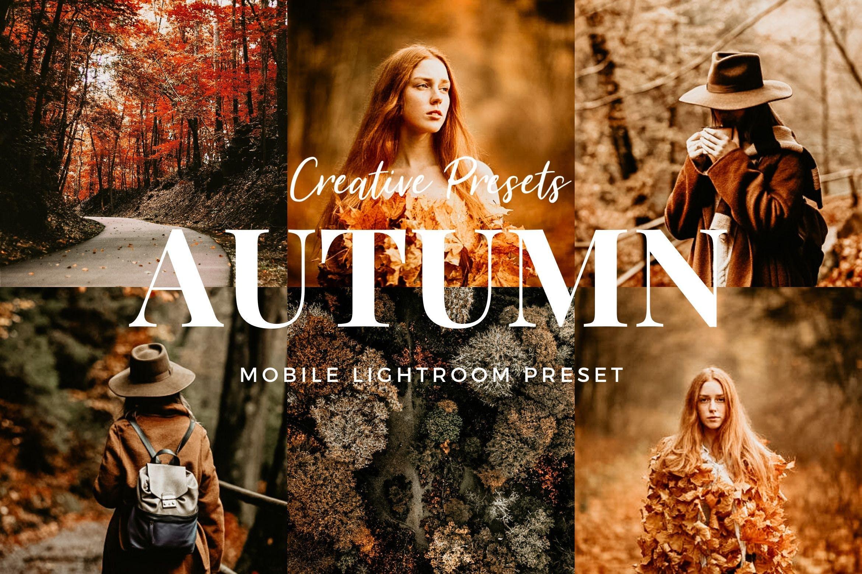 秋季主题暖色调滤镜摄影照片后期调色LR预设 Autumn Lightroom Mobile Presets插图