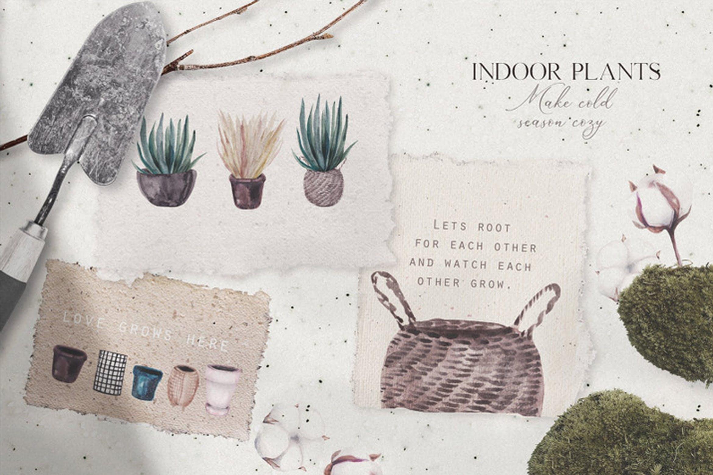 14种高清手绘室内植物水彩画PNG图片素材 Watercolor Hand Drawn Indoor Plants插图